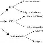 Summary of blood-gas analysis